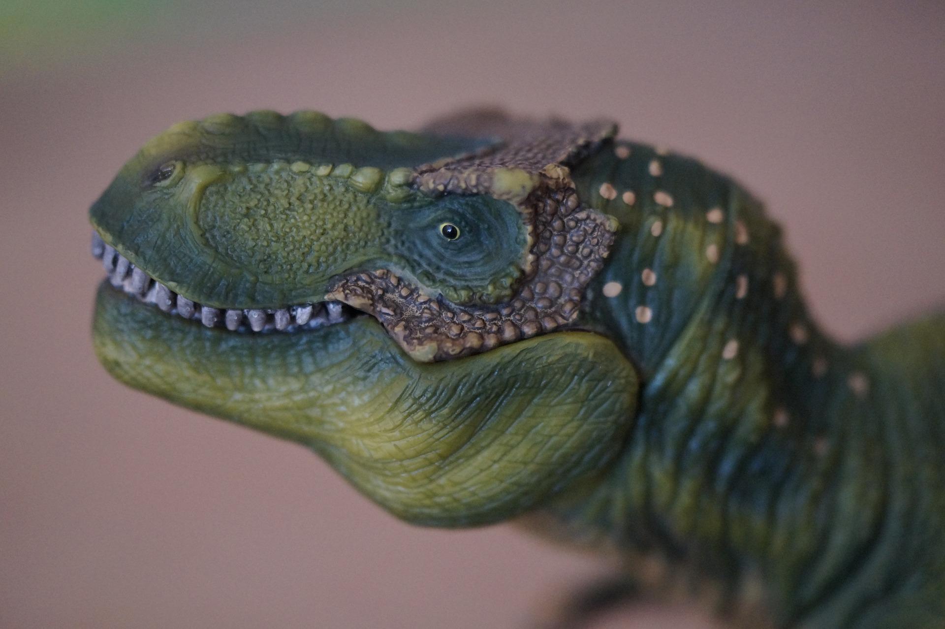 Les dinosaures sont à la médiathèque de Ligny-en-Barrois |