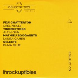 Les Inrockuptibles : Objectif 2021. Volume 2 | Divers. Musicien