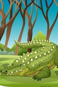 Ah les crocodiles... |